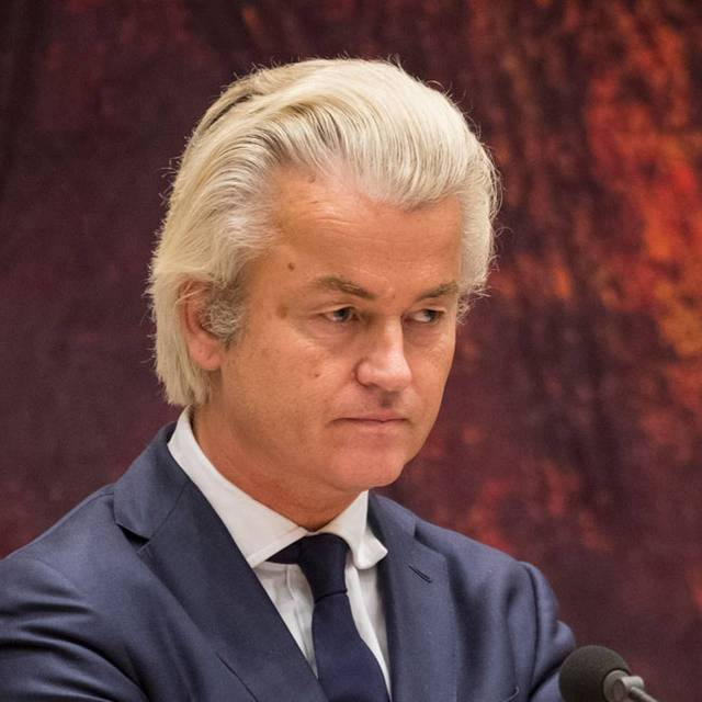 WIlders Red background