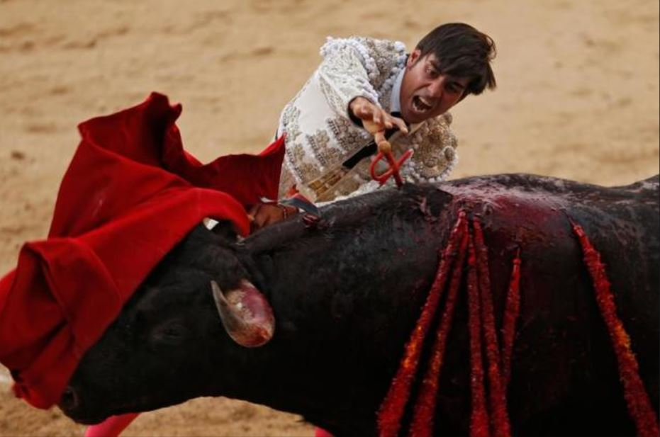 MEPs oppose Spanish corrida as 'cultural' tradition