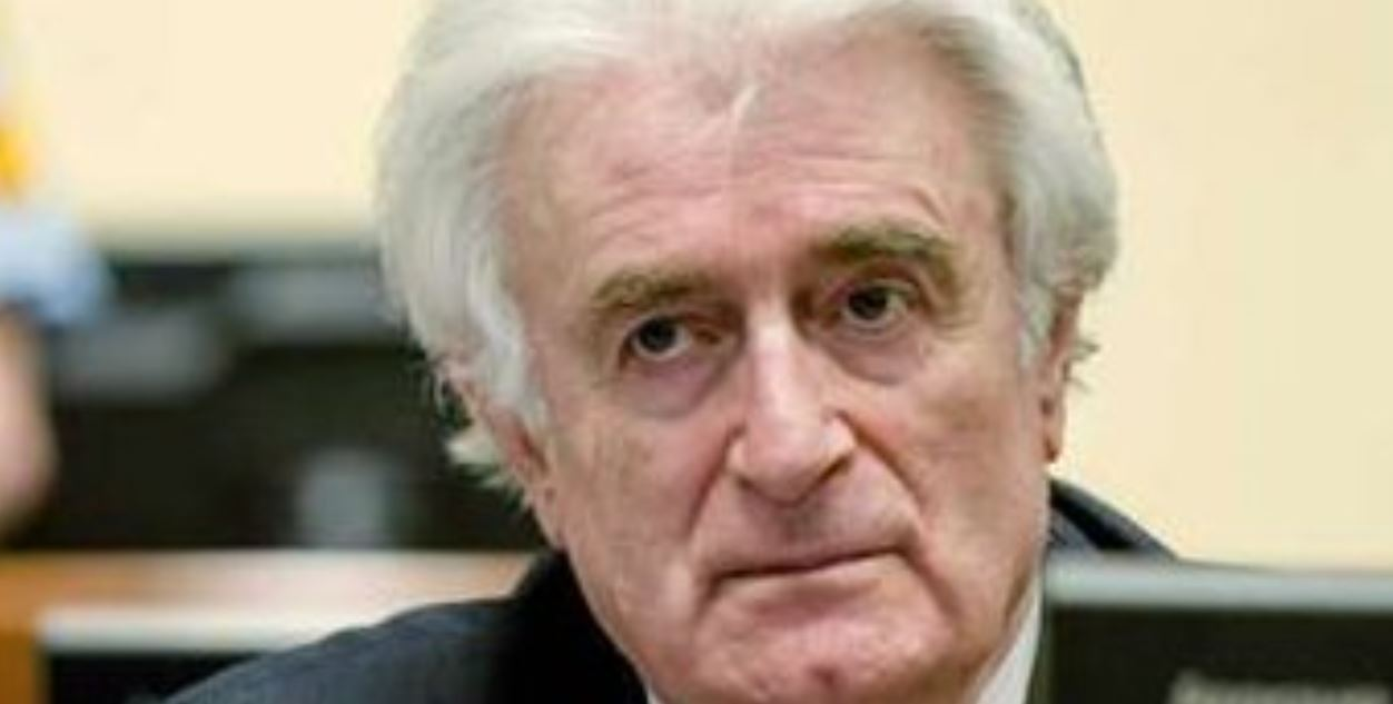 #Karadzic appeals to overturn genocide convictions