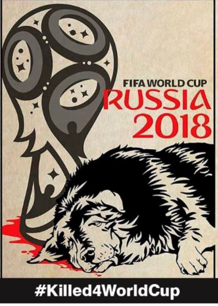 Killed4WorldCup