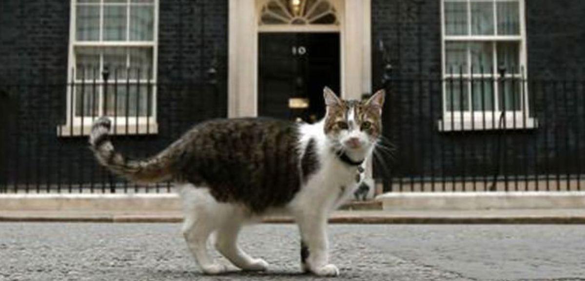 EU-UK Brexit draft deal agreed