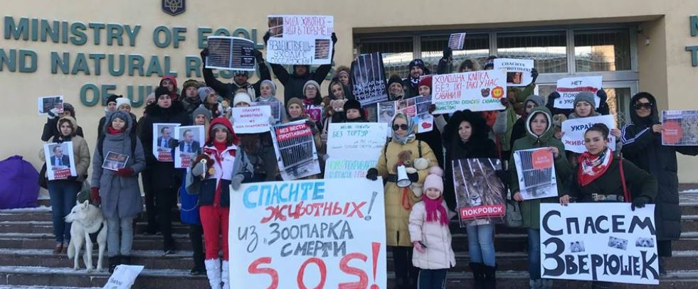 Ukraine animal welfare activists appeal to MEPs