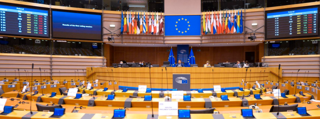 MEPs CALL for new elections in Belarus